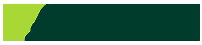 BIG-SMFG-logo2