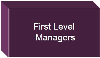 First Level Managers